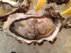 Sylter Royal Austern auf Eis