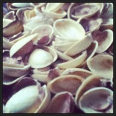 @pearl132010: Ate too much. #pistachio #shells #getcrackin