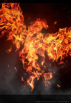 Guys I just discovered my Phoenix powers...overnight I burn to ash and the next day I reborn from it...