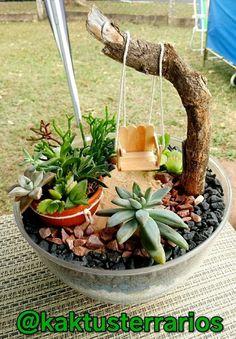 Fairy Garden Pots, Dish Garden, Garden Yard Ideas, Garden Terrarium, Succulent Terrarium, Garden Crafts, Mini Cactus Garden, Succulent Gardening, Succulents Garden