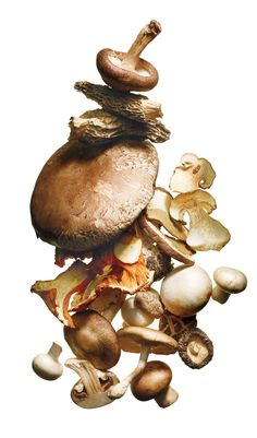 This recipe is by Mark Bittman and takes 30 minutes. Tell us what you think of it at The New York Times - Dining - Food. This recipe is by Mark Bittman and takes 30 minutes. Tell us what you think of it at The New York Times - Dining - Food. Dried Mushrooms, Stuffed Mushrooms, Anti Pickel Creme, Mushroom Stir Fry, Mushroom Stew, Beauty Magic, Beauty Tips, Beauty Stuff, Mark Bittman
