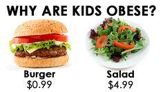 17 Best Healthy Food Memes Research Images Food Memes Memes Food