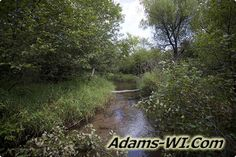 #troutfishing Little Roche-A-Cri Creek Trout Stream is located in Adams County Wisconsin here you can find Info, Maps, Photos, Aerial Images plus Area Information like nearby Lakes, Public Land, Townships and communities. #adamscountywi