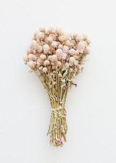 Wildflower Bridal Bouquets, Dried Flower Bouquet, Dried Flowers, Flower Bouquets, Fall Flowers, Pretty Flowers, Pink Flowers, Wedding Flowers, Rose Wedding