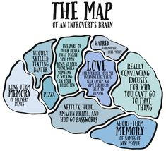 introvert-brain-map
