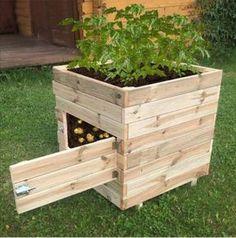 Garden Box Plans, Planter Box Plans, Planter Ideas, Raised Planter Boxes, Raised Garden Bed Plans, Raised Garden Bed Design, Small Garden Plans, Cheap Raised Garden Beds, Garden Design Plans
