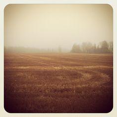Tõnis Kärema @tonis_k Instagram photos   Websta