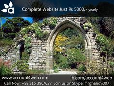 Account4WEB || Web Hosting in Pakistan.: Professional Website developer We Are Here Join Us...
