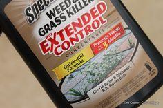 killing-weeds-during-002.jpg (600×400)