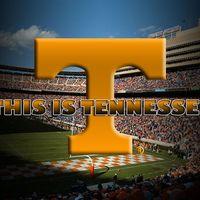 Tn Vols Football, Tennessee Volunteers Football, Tennessee Football, College Football Teams, University Of Tennessee, Sports Teams, Tennessee Game, Football Crafts, Football Football