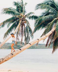 """Lauren Bullen no Instagram: """"Climbing palms for fresh coconuts  @tourismfiji #FijiNow"""""""