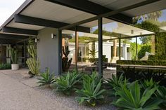 idea for planter against the front of house in driveway --- Midcentury Modernism