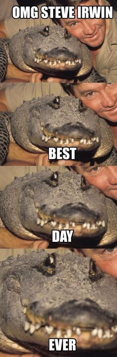 STEVE IRWIN! If I were a crocodile this would be me, lol