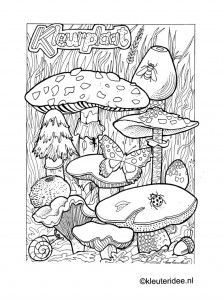 Kleurplaat herfst, paddestoelen, kleuteridee.nl , autumn, mushrooms preschool coloring.