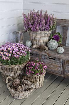 Potted Mums, Unique Garden, Rustic Garden Decor, Best Front Doors, Decoration Entree, Flower Decoration, Garden Decorations, Pot Jardin, Small Space Gardening