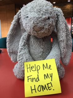 Found at Hemel Snow Centre! I saw the parents and child who own this rabbit pass my desk a few days ago and have just found him all alone! Please help me get him home! Contact here: https://www.facebook.com/groups/HHConvo/?fref=nf