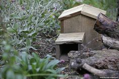 Tip of the week: hedgehogs can be a little fussy about where they live. Your hog-home should be out of direct sunlight and the front entrance should be out of the wind! #homesfornature #hedgehog #hedgehogs