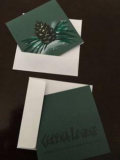 Winter Note Card set pine cone hand painted card Christmas