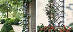 Plant Supports - Rain Spout Trellis, short