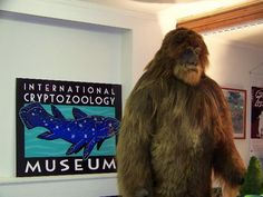 The world's only international cryptozoology museum is host to an unrivaled collection of cryptid specimens