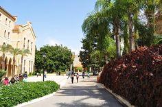 American University of Beirut !!