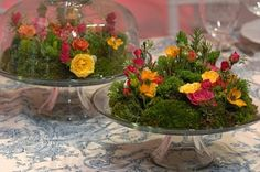 Cake Stand Floral Display -  All the visual impact of a beautiful cake without the calories!   Moss-based mini-gardens studded with seasonal flowers.  Oh, and cheaper than cake, too ;-)