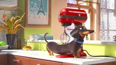 """ペットの皆さん、お留守番中は何して過ごしてますか? """"The Secret Life Of Pets""""   the WOOF"""
