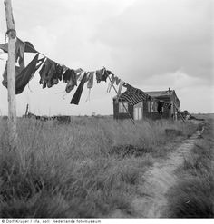 Dolf Kruger :: Farmworkers House, Drenthe, Holland, / clothesline, washing line Old Pictures, Old Photos, Vintage Photos, Black White Photos, Black And White Photography, Blowin' In The Wind, Farmhouse Landscaping, Vintage Laundry, Robert Doisneau