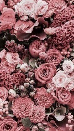 Prachtige roze rozen voor op een uitvaart met een romantische thema | kijk voor meer inspiratie voor de uitvaart op www.rememberme.nl #rozen #bloemen #flowers #roze #rose #romantisch #uitvaart #thema #afscheid #verlies #rouw Wallpaper Quotes, Wallpaper Backgrounds, Flower Iphone Wallpaper, Spring Wallpaper, Artsy Photos, Rose Bouquet, Colorful Flowers, Beautiful Flowers, Flower Girl Dresses