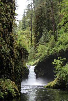 Punch Bowl Falls // Eagle Creek Trail // Columbia Gorge Oregon