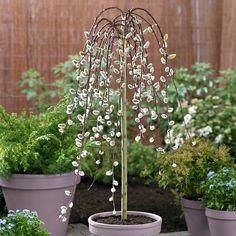 Der Richtige Hausbaum: 15 Baumarten, Die In Ihren Garten Bestens Passen