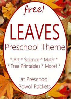 Fun leaf activities for a preschool leaf theme! Math, science, crafts, and more!