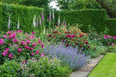 Цветник с розами в саду английского стиля