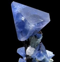 Benitoite and Neptunite / Mineral Friends <3