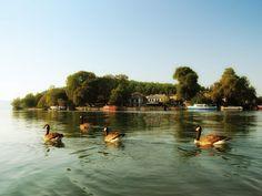Ioannina   Lake Pamvotis, The jewel of the district!