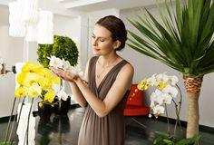 Orchideen - Pflege + Umtopfen