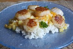 Pan-seared scallops with pina colada salsa and coconut rice.