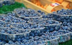 Blueberries, Berries, Fruits, Fruit
