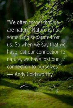 """""""We often forget that we are nature. Nature is not something separate from us. So when we say that we have lost our connection to nature, we have lost our connection to ourselves."""" - Andy Goldsworthy Quotes"""