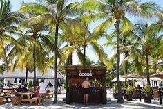 Cool off with a fresh Coco Loco, the signature drink at #ElDoradoResorts.