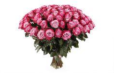 прекрасный Букет 71 роза Дип Перпл  #Букеты #Оригинальныебукеты,Букет71розаДипПерпл
