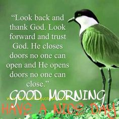 Thank God Good Morning god religious quotes morning good morning morning quotes good morning quotes morning quote good morning quote Happy Morning Quotes, Morning Thoughts, Good Morning Inspirational Quotes, Morning Greetings Quotes, Good Morning Messages, Good Morning Wishes, Morning Sayings, Good Morning Picture, Good Morning Good Night