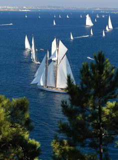 Have you ever sailed in Antibes, France? Take a look at this view.