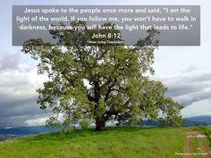 Light - John 8:12