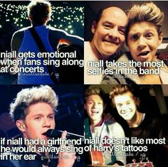 LOL he don't like Harry's tattoos lol.NIALLS ONE OF US I'm laughing so hard at these comments. Seriously this the number TREE!I think the second one is mistaken. Liam takes quite a lot of selfies. He like a baby unicorn One Direction Facts, I Love One Direction, Love Of My Life, In This World, Tres Belle Photo, I Love Him, My Love, Irish Boys, Bae