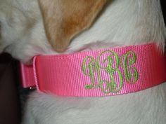 Loving Life and Lilly (Monogram Dog Collar!)