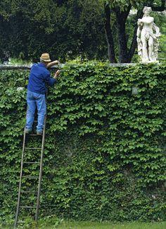 At Villa da Schio near Vicenza in the Veneto from Italian Gardens by Helena Attlee