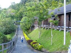 Batang Ai Longhouse