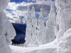 Stevens Pass, Cascades, Washington.  When we missed Northeastern winters, we headed here for our snow fix.