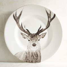 Pier 1 Imports Winter Buck Deer Porcelain Salad Plate ($6.36) ❤ liked on Polyvore featuring home, kitchen & dining, dinnerware, winter dinnerware, green dinnerware, corning dinnerware, porcelain dinnerware and green salad plates